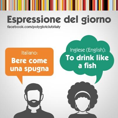 Italian / English idiom: drink like a fish