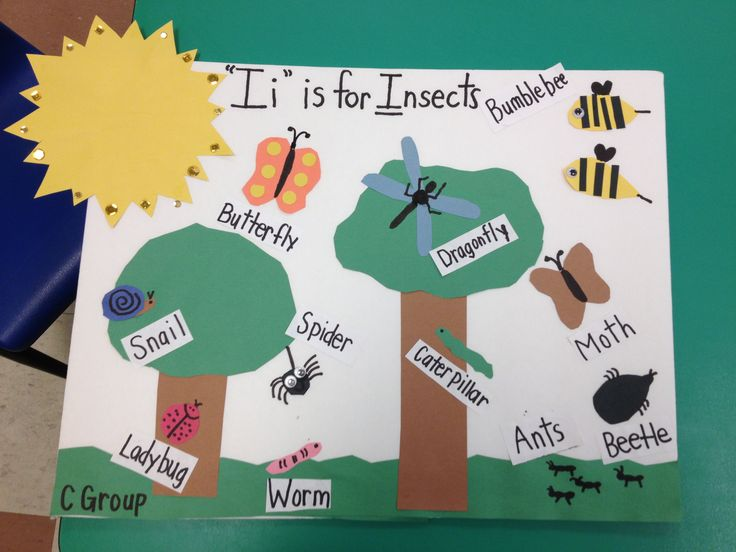Teaching preschoolers about insects