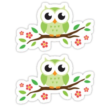 Cute green owls siting on tree branch with red flowers. Stickers from Redbubble