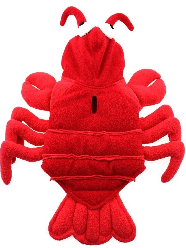 Best 25+ Lobster costume ideas on Pinterest | Crab costume ...