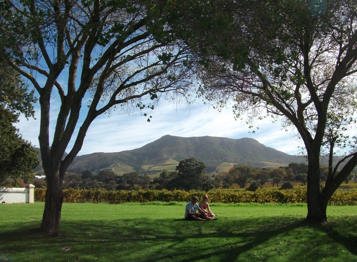 The 2012 Constantia Food and Wine Festival at the The beautiful Constantia Uitsig vineyard, Constantia, Cape Town, South Africa