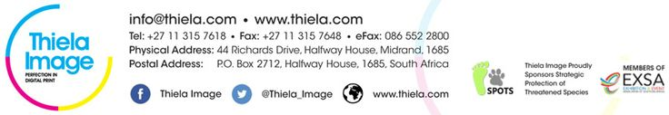 Thiela Image   Corporate Identity   Email Footer Design