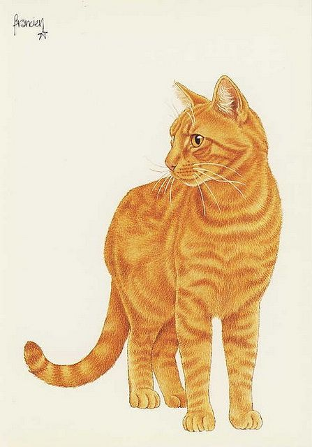 Cards, Cats-Art, Francien.van.Westering - 89 | Flickr - Photo Sharing!