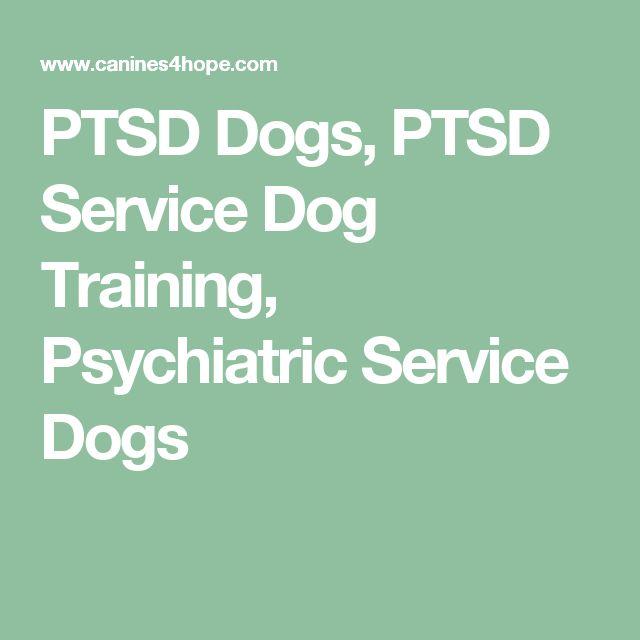 Emotional Service Dog Training Near Me