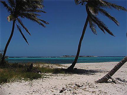 Les Grenadines// Saint-Vincent-et-les-Grenadines > Tobago Cays