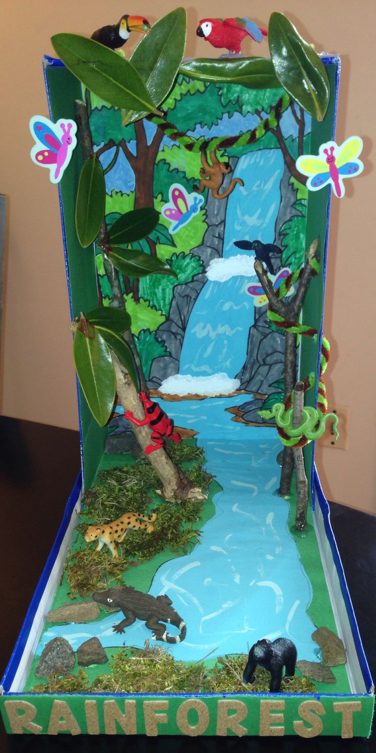 Rainforest Diorama...our final product. My son, Samy, is so excited!