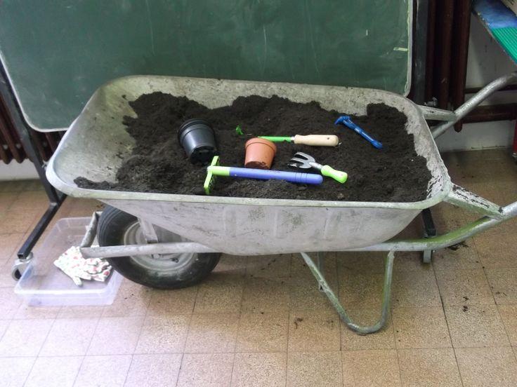 de zaaihoek: Kruiwagen in klas plaatsen en vullen met aarde