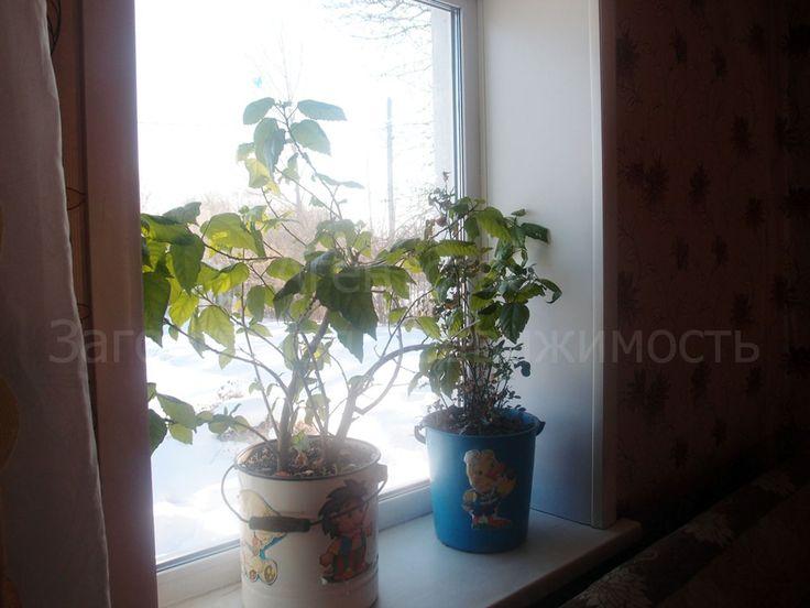 668. Оцените прелесть свежего воздуха   Обратите внимание на этот дом, расположенный в п. Приамурский. Отличная транспортная доступность позволяет добраться до Хабаровска за 10 мин. Дом из силикатного кирпича, общей площадью 43 кв.м, две жилые комнаты, кухня, кроме того теплая веранда площадью 14 кв.м. Окна пластиковые. Скважина в доме, установлена водонасосная скважина. Отопление печное-водяное. На участке 15 соток (в собственности) имеются многочисленные плодово-ягодные насаждения…