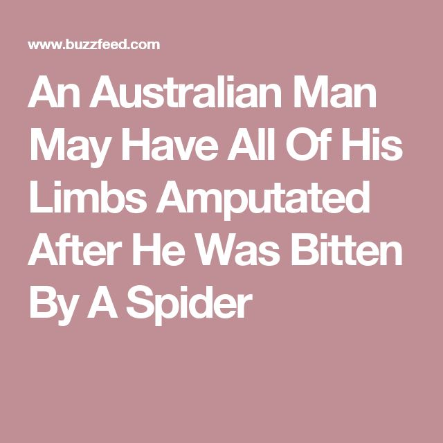 An Australian Man May Have All Of His Limbs Amputated After He Was Bitten By A Spider