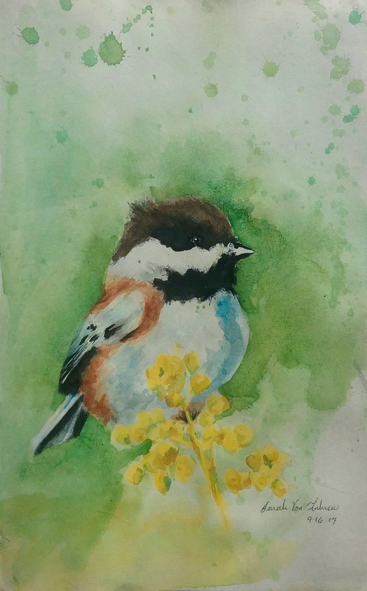 Watercolor art history brush - Multy Media Watercolours Pen And Pencil Of Bird