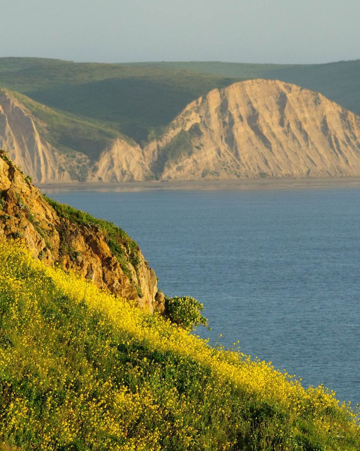 16 best places i d like to go images on pinterest for Point reyes cabine