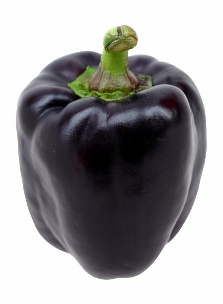 Purple Beauty Bell Pepper (10 seeds)