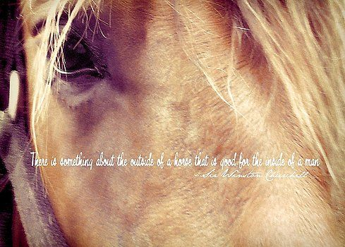 JAMART Photography - ANDALUSIAN EYE quote