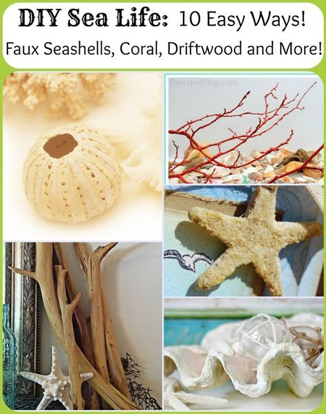 DIY Sea Life: 10 easy ways to make faux starfish, clam shells, coral, driftwood, sea urchins and more! Nautical Decor!