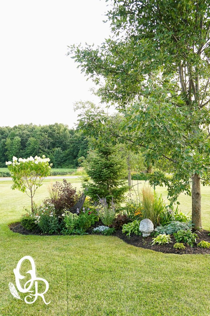 Flower Garden Ideas Around Tree best 25+ corner landscaping ideas on pinterest | corner