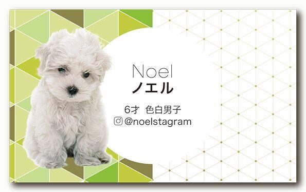 ペット名刺 犬デザイン 横型012<br> オーダーメイド 犬グッズ (1個50枚入)