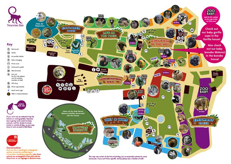 55 best Zoo Maps images on Pinterest The zoo Zoos and Zoo map