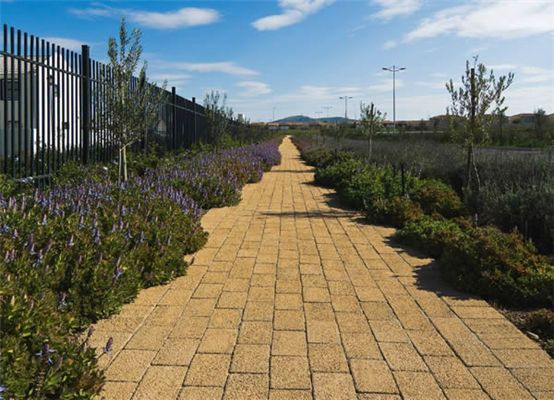 The Advantages of Wet and Dry-Cast Brick Paving