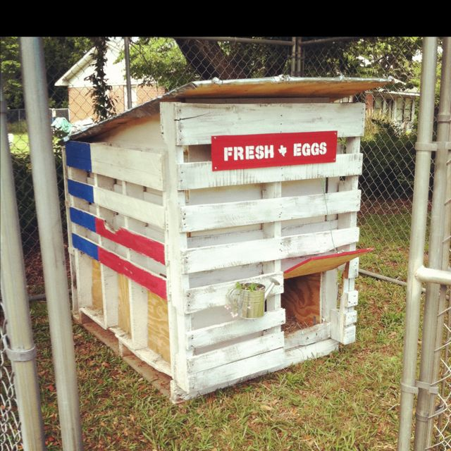 Texas Chicken Coop...with pallets