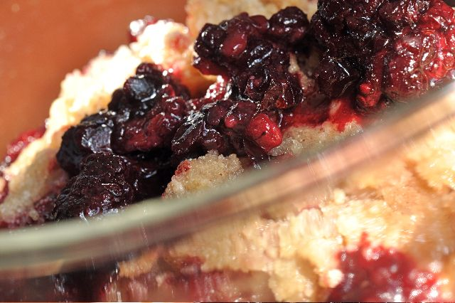 Gluten Free Fruit Cobbler - use any berries, stone fruit, apples or other fruit you like. Easiest recipe ever!!!!  #glutenfree #dairyfree gfJules