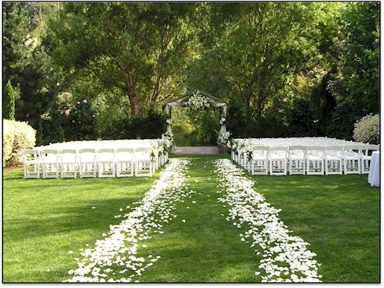 Wedding Aisle with Rose Petals the rose petals...oh the rose petals! www.flyboynaturals.com for over 100 colors of petals.