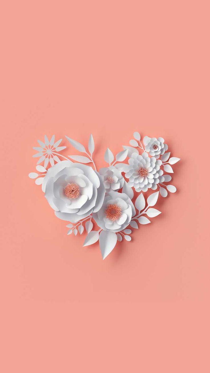 Wallpapers White Flower Wallpaper Flowers Photography Wallpaper Flower Wallpaper