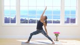 Most Popular Videos - Level 1/2 - Yoga Anytime