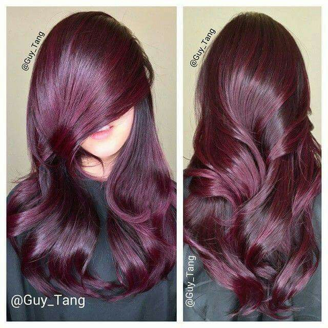 red short hair styles best 25 burgundy hair colors ideas on 1876 | 4957195f40f12fcbea269615cfcc1876 violet red hair color burgundy hair colors
