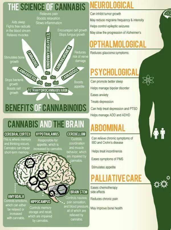 In your opinion, What are the benefits of Marijuana? If your choice is none. Explain?