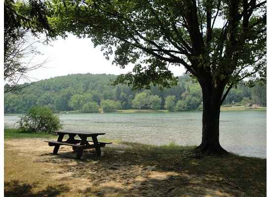 85 best greensburg pennsylvania images on pinterest for Places to fish near me for free