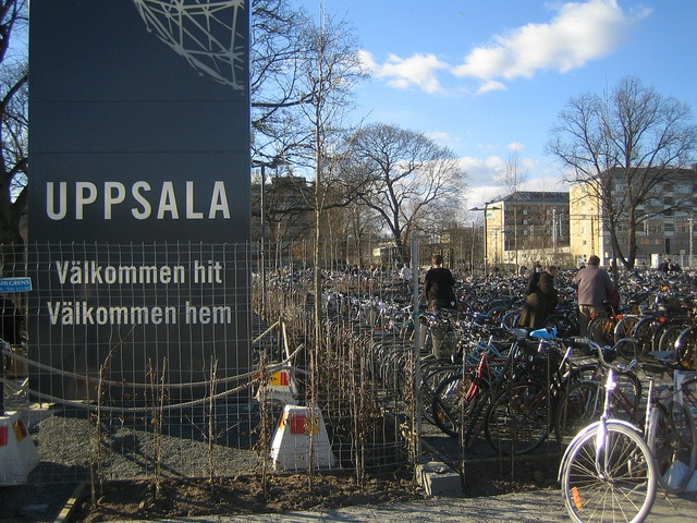 Swedish people are fond of bicycles, although they can afford huge automobiles. This is the parking lot of the Railway station, Uppsala. Eco-friendly  Swedish Town by profmpc, via Flickr