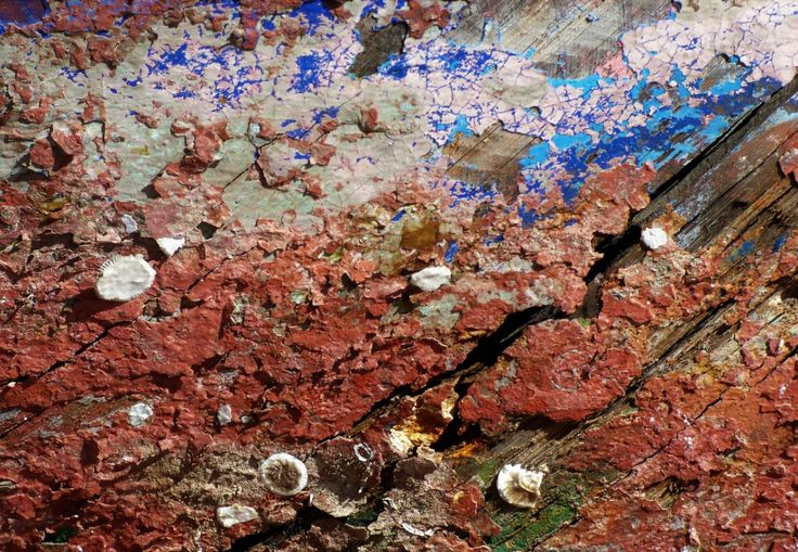 Abblätternde Farbe und altes Holz, Bootswerft Guidecca, Venedig - Foto: S. Hopp