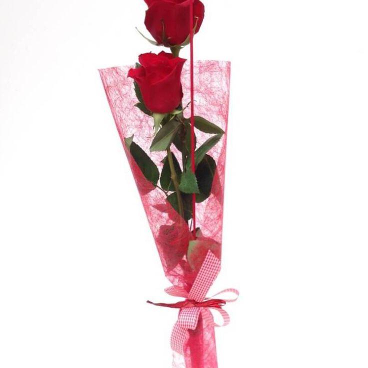 ramo de 2 rosas rojas, un perfecto ramos de rosas para regalar y al mejor precio