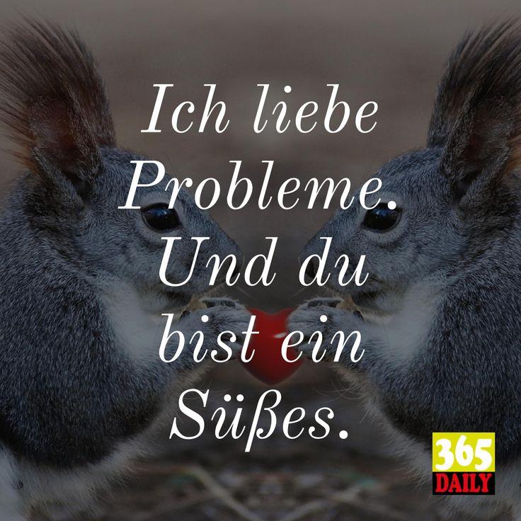 Probleme:  Ich liebe sie. Wenn sie gut sind.   #Probleme#Eichhörnchen#Gutenmorgen#Witzig#kultig#Kult#sehrsüß#niedlich#überraschung#teilhaben#betrachtung#tierisch#augenzwinkern#Eheprobleme#Ehefrieden#erkenntnis#gedanke#liebevoll#lieben#sichlieben#harmonie#necken#herzchen#herz#streiten#streit#teilen#verteilen