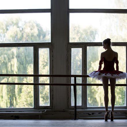 19 best Bailar images on Pinterest Ballet dance, Ballet dancers - ballet dancer resume