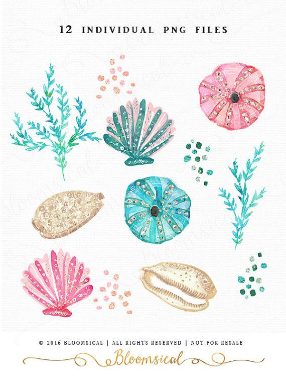 Chic Hand Painted cliparts featuring glitter sea shells, sea urchins shells & aquatic plants, confetti in teal, blush, peach, light gold and warm grey. You will receive 12 individual graphic to create your own design arrangement and layout. The clip art set is perfect for scrap booking, card making, invites, websites, blogs, shop design, gift & box wrapping, envelope, party decor, planner stickers, photography marketing, posters and many more! Matching digital papers: https:/&...