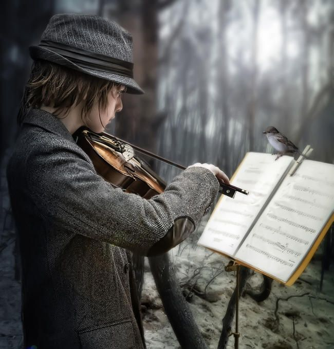 The sound of music in the woods