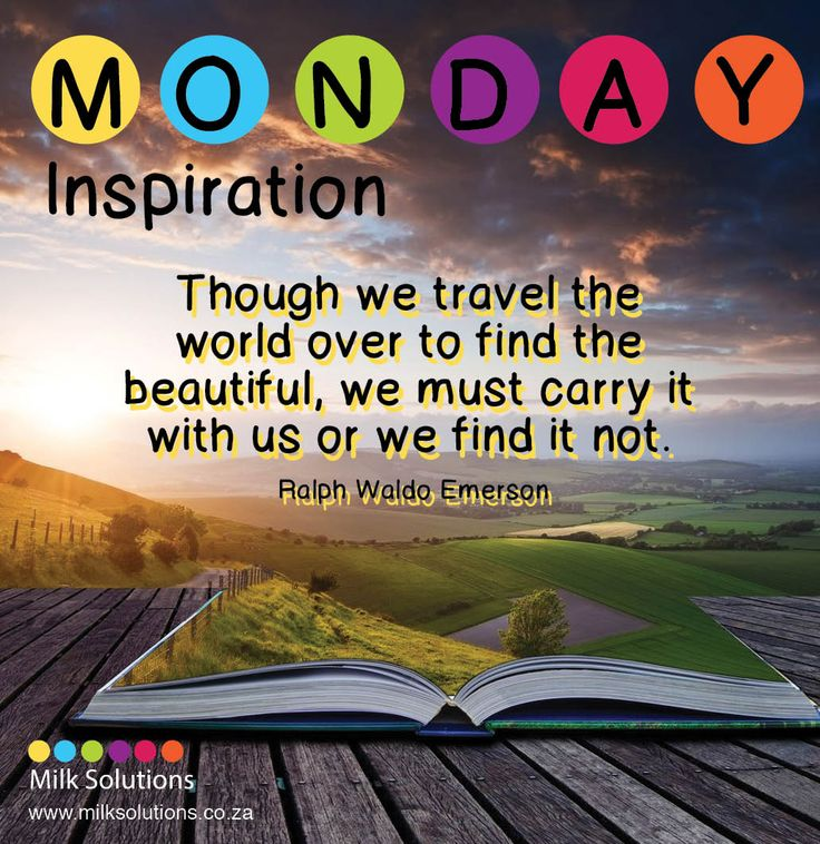 www.milksolutions.co.za www.facebook.com/MilkSolutionsSA Monday Inspiration