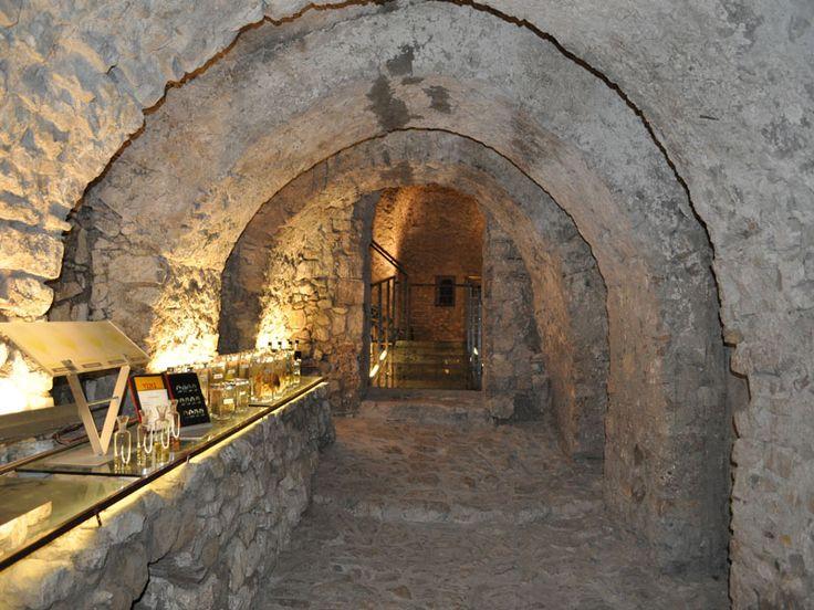 Enoteca Regionale dei vini d'Irpinia _______________________ -ITALIA-CAMPANIA: il vino Aglianico di Taurasia  by Francesco-Welcome and enjoy-  #WonderfulExpo2015  #Wonderfooditaly #MadeinItaly #slowfood #FrancescoBruno    @frbrun  http://www.blogtematico.it   frbrun@tiscali.it    http://www.francoingbruno.it   #Basilicata