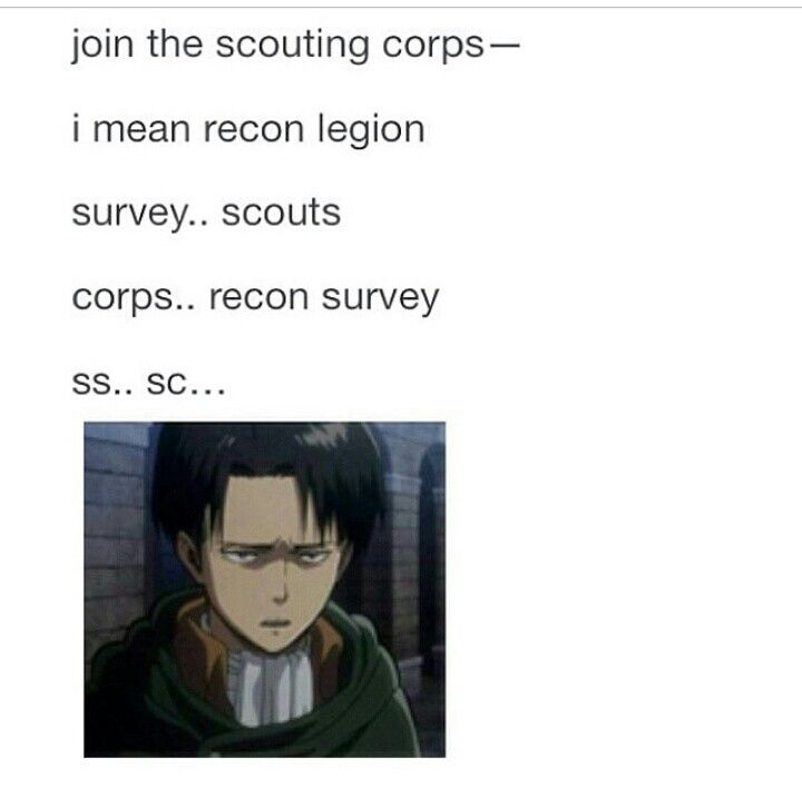 ((WHY DO WE KEEP CHANGING THE NAME FOR THE SURVEY CORPS/WHATEVER MILITARY THING IN ATTACK ON TITAN COME ON WE NEED A LOT OF HELP HERE))