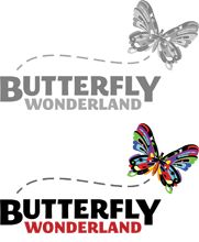 Welcome to Butterfly Wonderland - A Rainforest Experience.