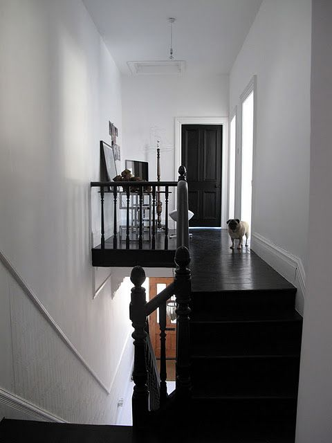 Farrow ball pitch black floor paint paint pinterest for 13th floor pitch black
