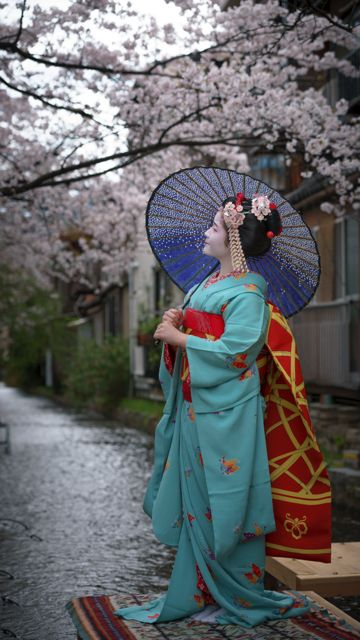 geisha-kai: April 2016: minarai Fukuna under cherry blossoms by Gaap on…