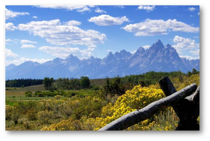 Lodging accommodations togwotee mountain lodge oh for Jackson hole wyoming honeymoon cabins