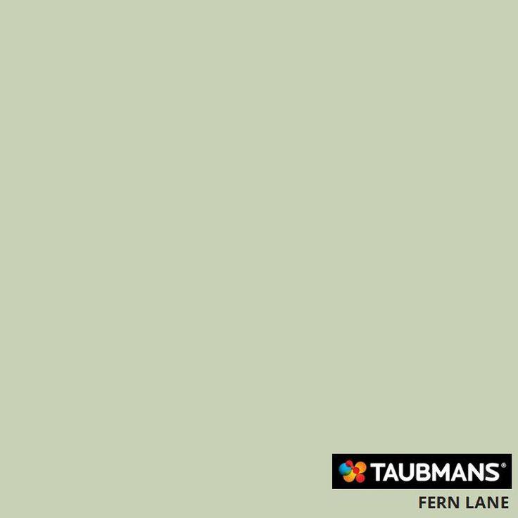 #Taubmanscolour #fernlane