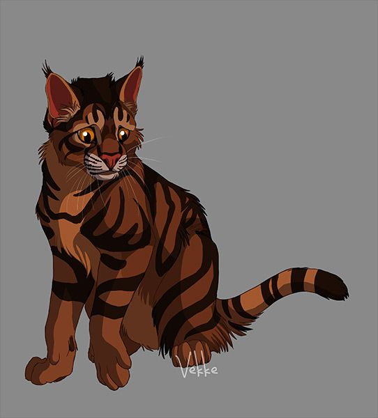 pictures of warrior cats   Warrior Cats Forever Bramblestar is sad