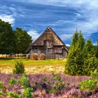 Pisane jest Ci życie na wsi czy w wielkim mieście?