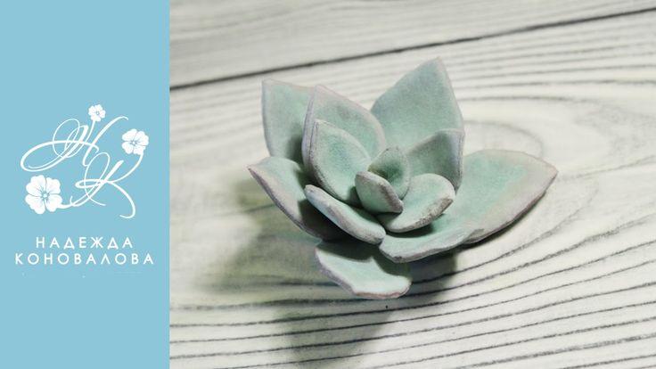 Каменная роза или суккуленты из зефирного фоамирана   подробный мастер к...