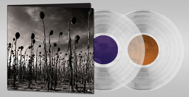 "New album of Dead Can Dance ""Anastasis""  Just bought in vinyl.... Cant't wait !"