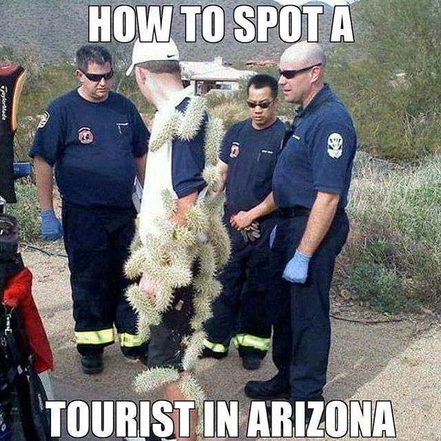 How to spot a tourist in Arizona  (funny via Instagram @cyndila)